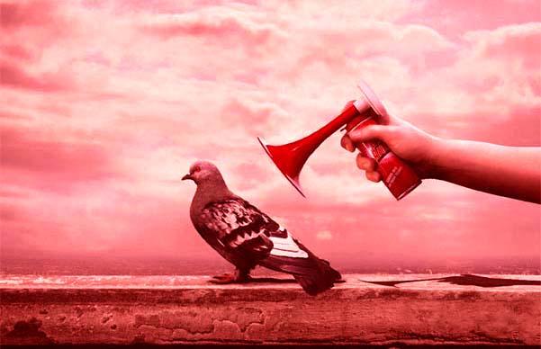 piccione teatrale rosso