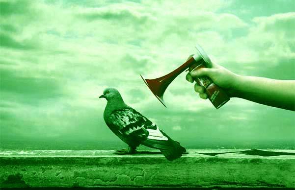 piccione teatrale verde